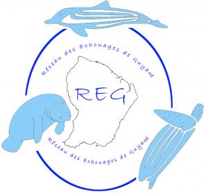 Logo REG